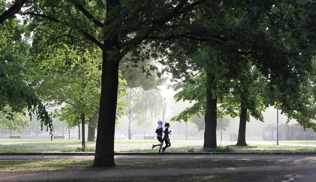 Jogging (Ihub)